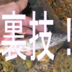 必釣!マス釣り初心者必見!管理釣り場を楽しむための5つの裏技伝授!【ファミリーフィッシング】
